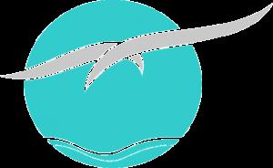 Logotipo Fundo Transparente